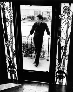 Paul seen through the stained glass doorway at 934 Pamela Lane.
