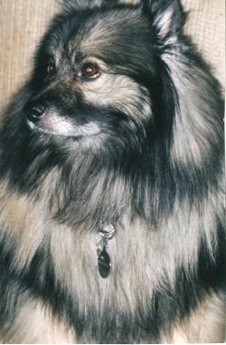 Imelda, early 1990s.