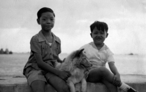 Two Brothers and a Chow on Dewey Blvd., 1948.